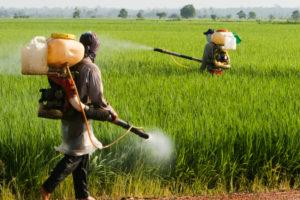 Vietnam e pesticidi