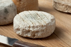 Traditional french goats cheese formaggio di capra