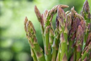 asparagi verdura iStock_000013125027_Small pesticidi