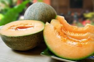 infezioni alimentari melone