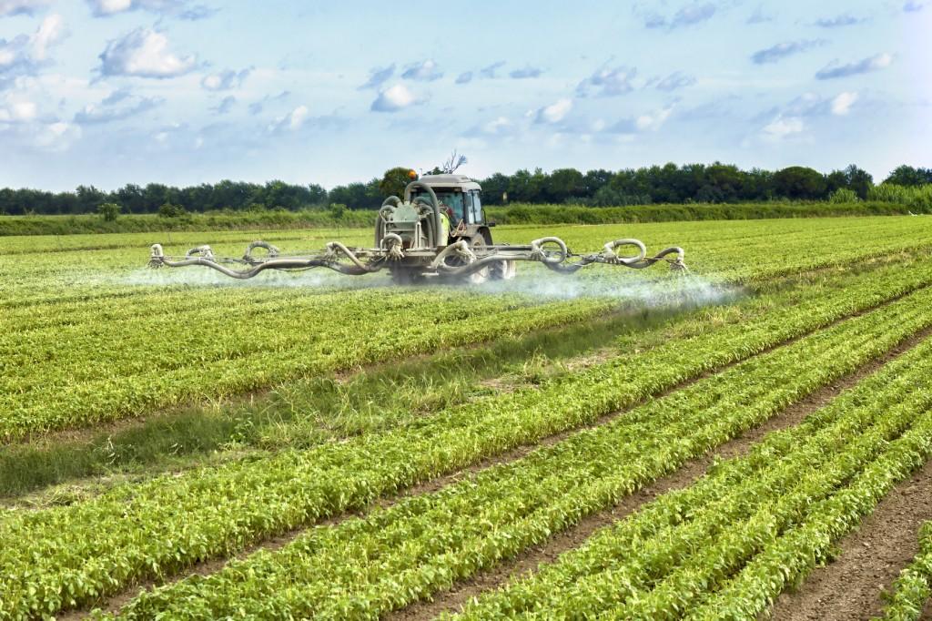 pesticidi erbicidi campi agricoltura 2