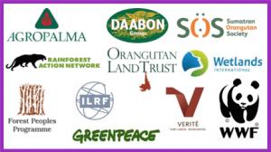 membri poig olio di palma sostenibile