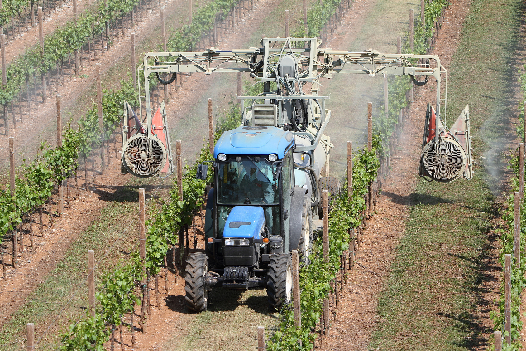 insetticidi, agricoltura, pesticidi