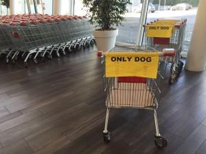 Carrello per cani