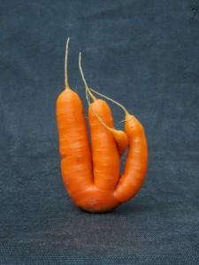 carote strana forma verdura