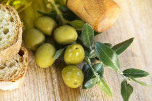 olive olio campagna olearia