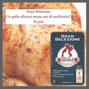 pollo del piemonte gran selezione 2016