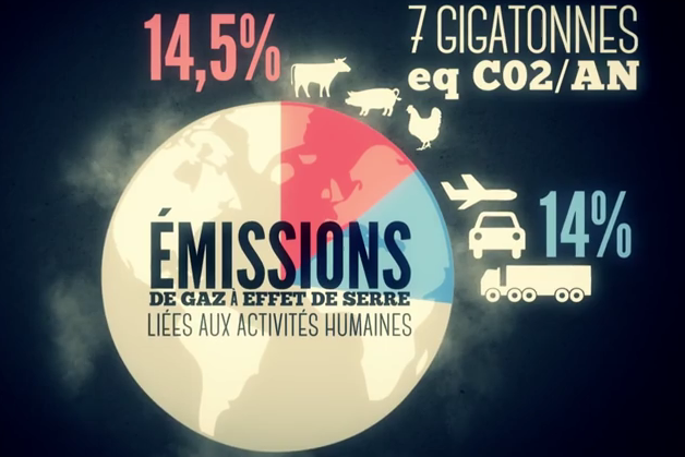 Video carne emissioni Data Gueule