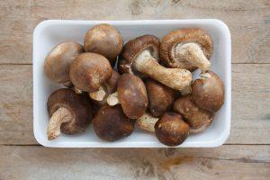 rischi funghi shiitake