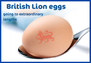 uova lion eggs code