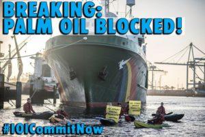 greenpeace rotterdam ioi olio di palma