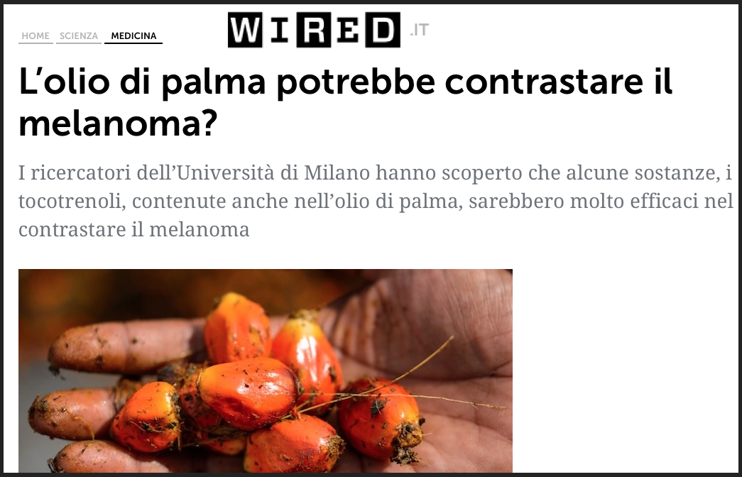olio di palma wired