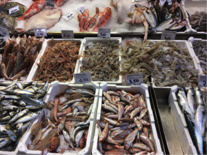 Il pesce della Pescheria L'Adriatica in via Drapperie