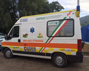 terremoto marche ambulanza-veterinaria