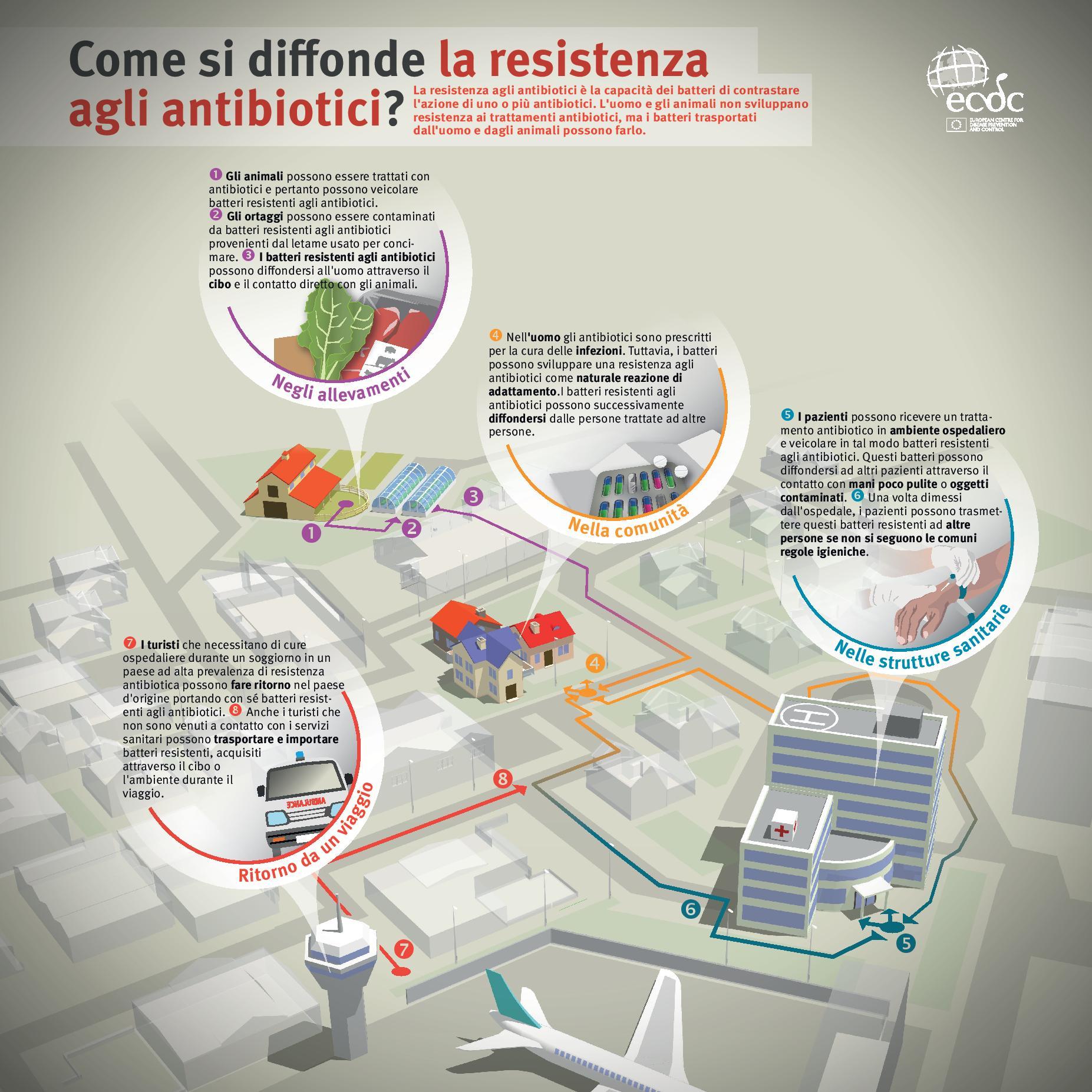 resistenza agli antibiotici infografica ecdc