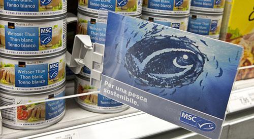 Msc certificazione pesca sostenibile