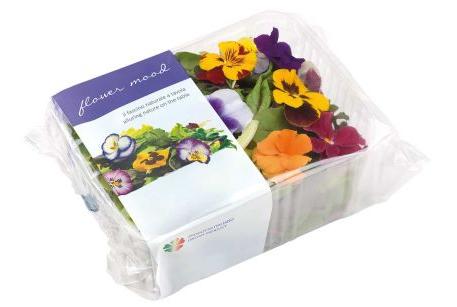 fiori dell'orto
