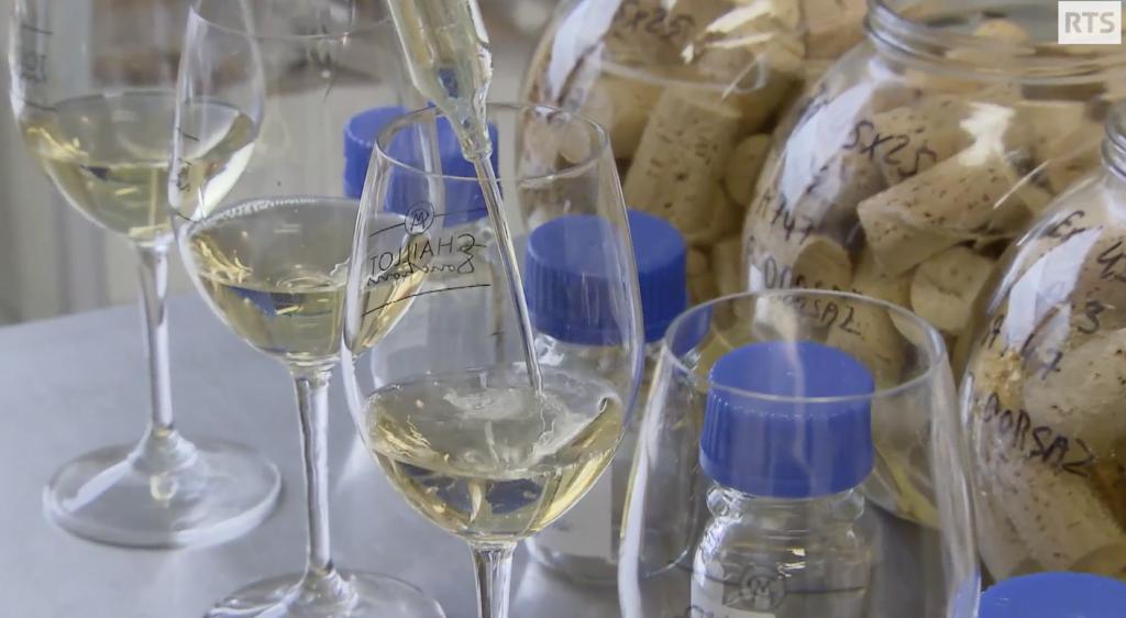 a bon entendeur vino bianco tappi di sughero